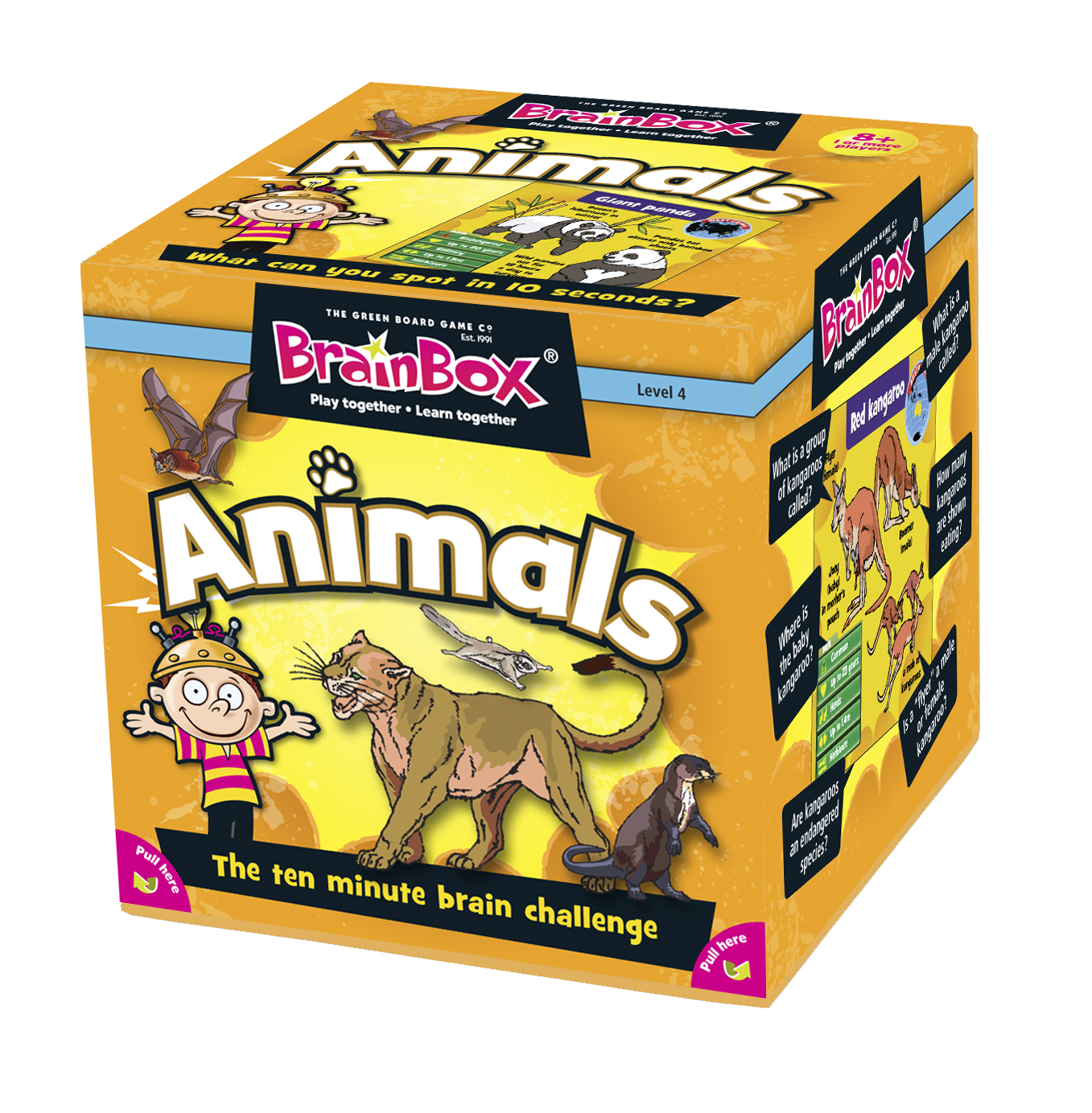 Details about BrainBox Animals Educational Learning Memory Recall Quiz Game